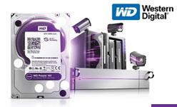 WD81PURZ / WD101PURZ Nowe dyski HDD do pracy ciągłej 24/7 Western Digital
